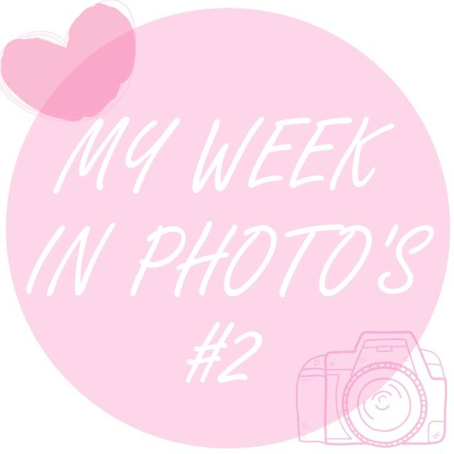 PicsArt_1453645514181.jpg